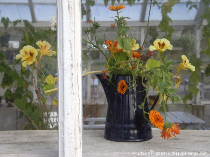 Autumn flowers in a black jug