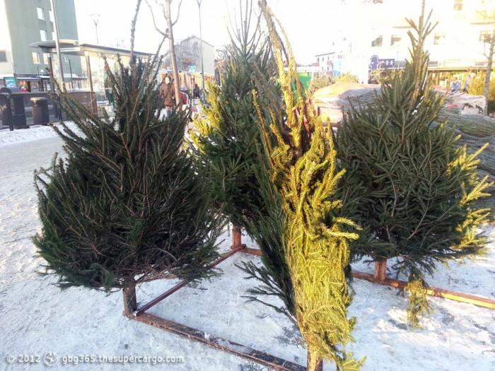 Flat Christmas trees
