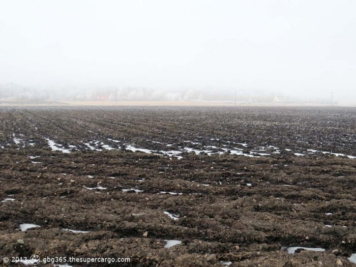 Frosted fields also