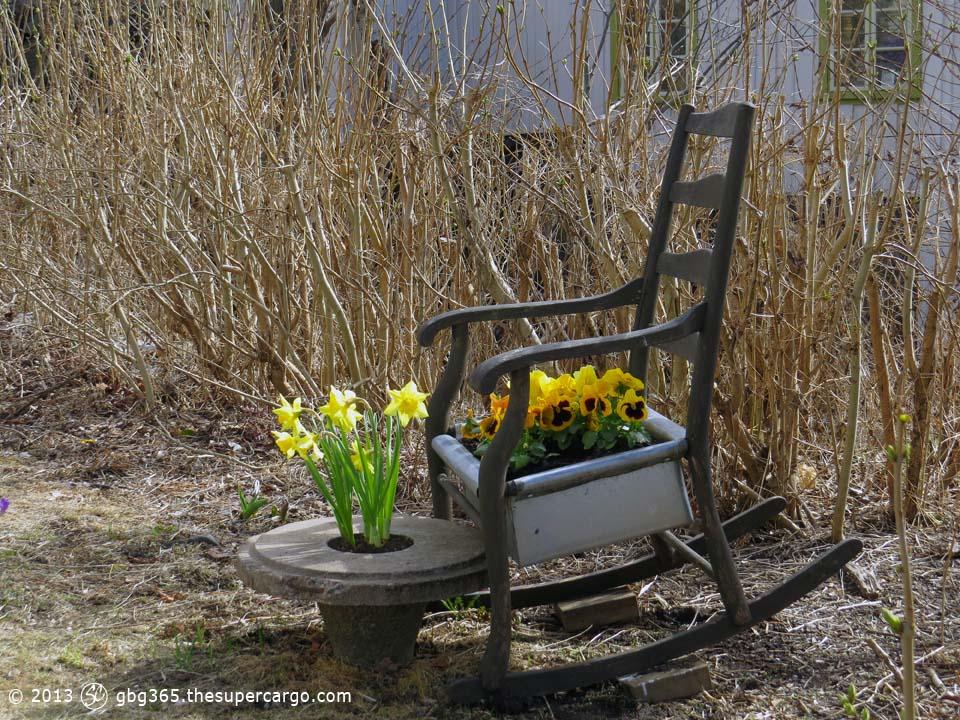 Spring flowers on Slottsberget