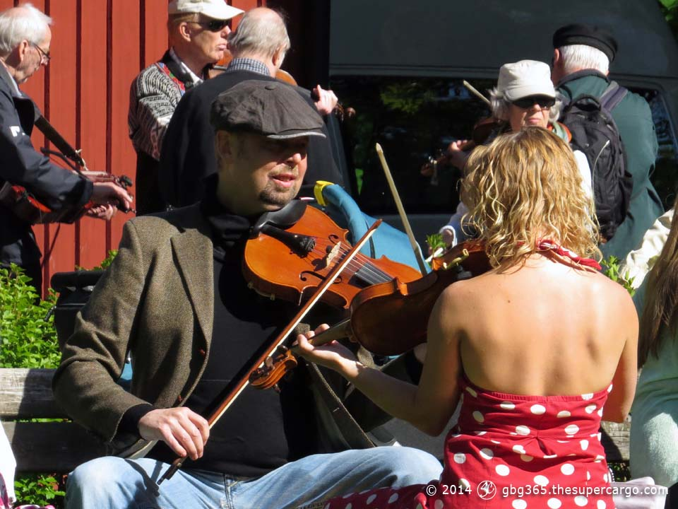Folk violin meeting