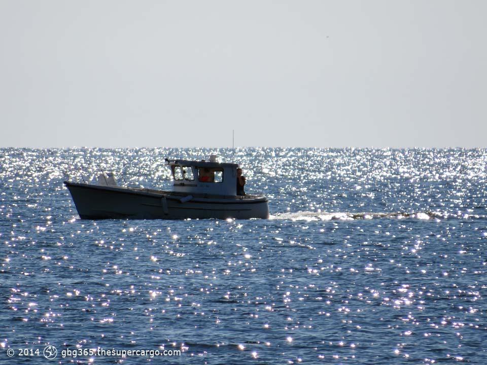 On sun glittered water