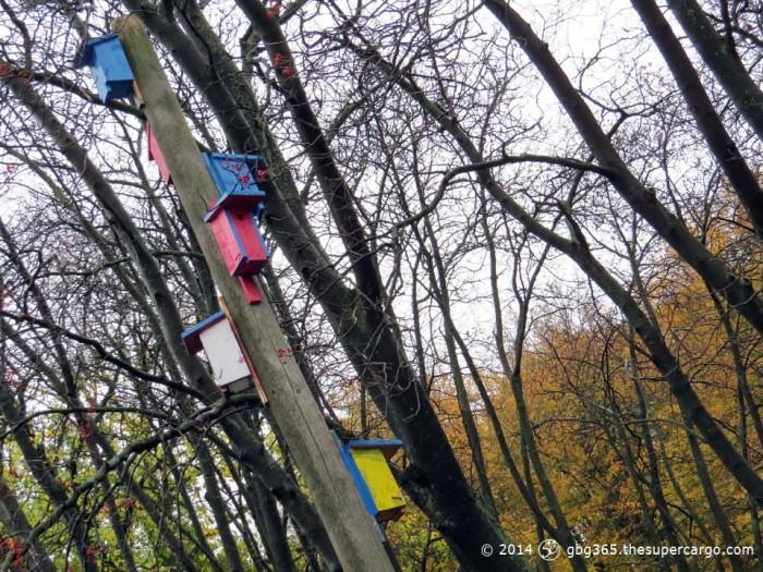 Colourful birdhouses