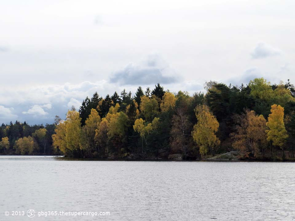 Autumn colours at Delsjö