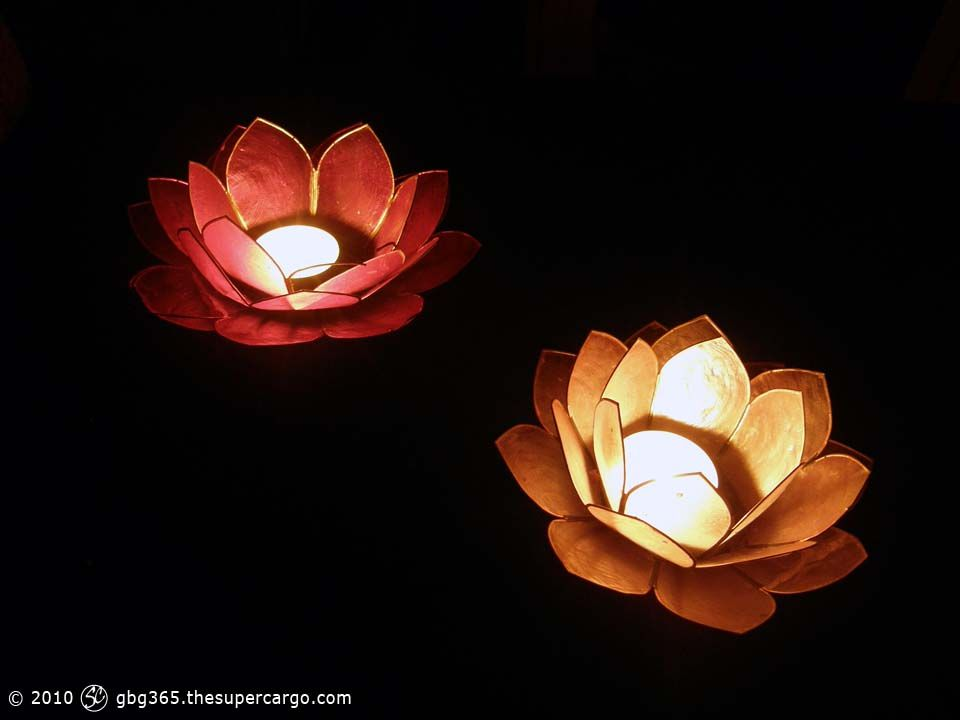 by-flower-light.jpg