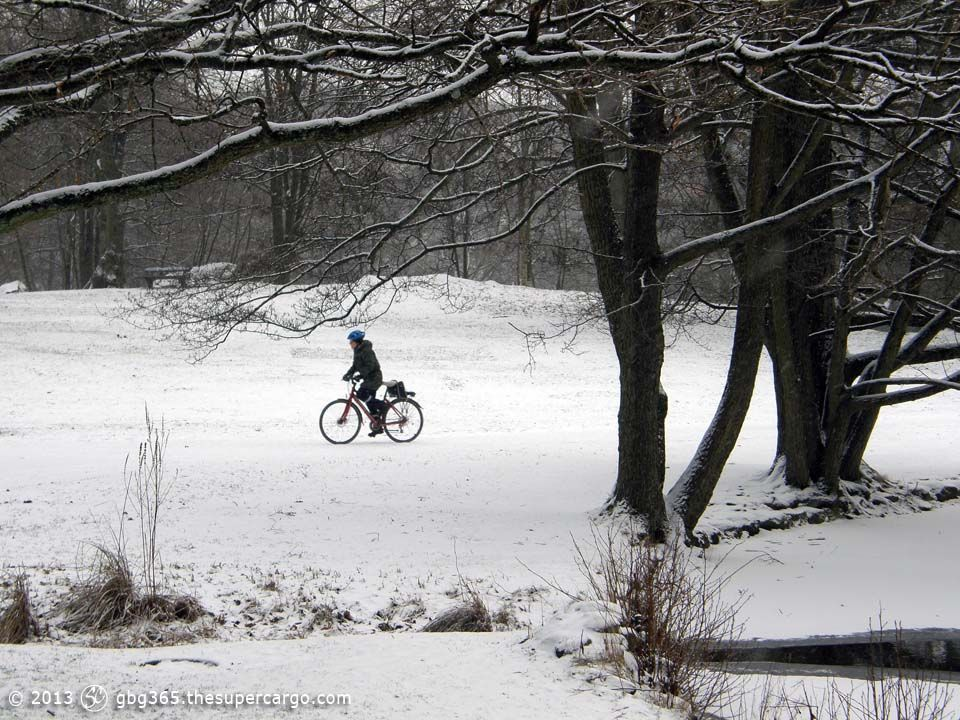 bicyclist-in-the-park.jpg
