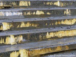 Form of steps