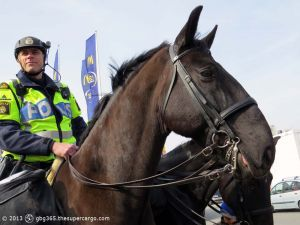 The horse and his policeman
