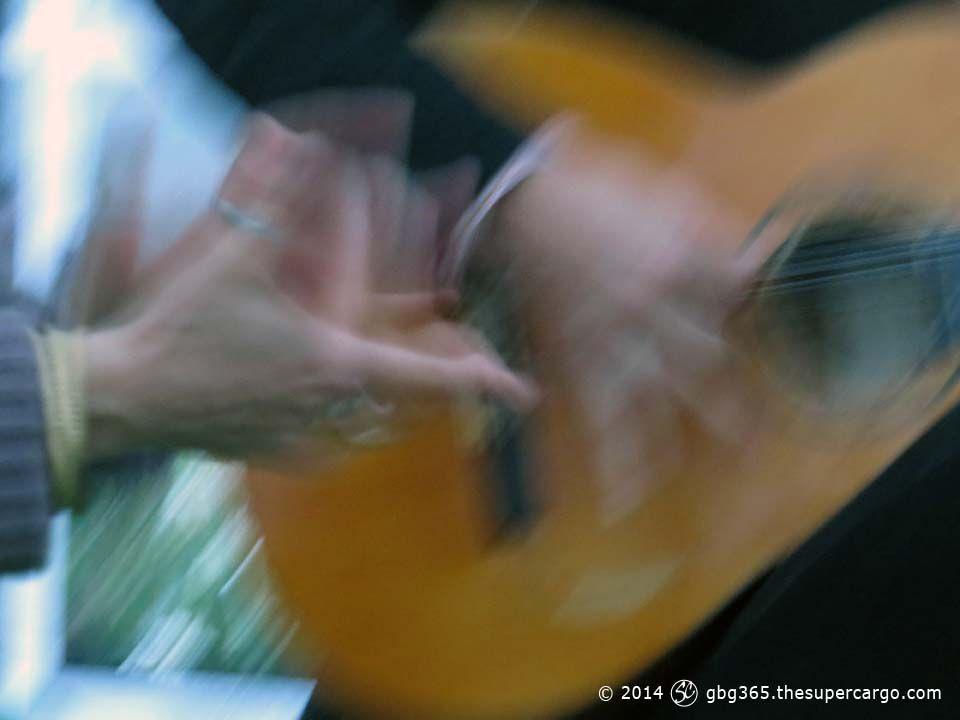 c81-flamenco.jpg